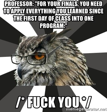 """ITCS Owl - Professor: """"For your finals, you need to apply everything you learned since the first day of class into one program."""" /* fuck you */"""