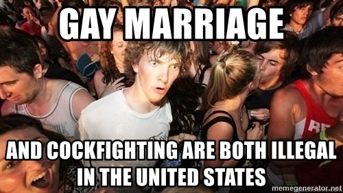 Sudden Realization Ralph - Gay Marriage and cockfighting are both illegal in the United states