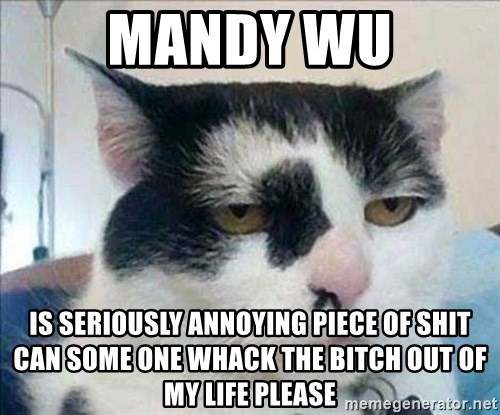 Serious Cat - mANDY WU IS SERIOUSLY ANNOYING PIECE OF SHIT CAN SOME ONE WHACK THE BITCH OUT OF MY LIFE PLEASE