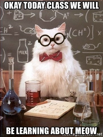 Chemistry Cat - OKAY TODAY CLASS WE WILL BE LEARNING ABOUT MEOW