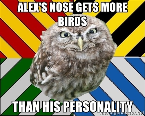 JEALOUS POTTEROMAN - Alex's nose gets more birds than his personality