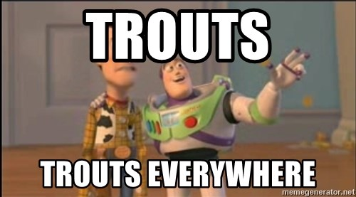 X, X Everywhere  - Trouts Trouts everywhere