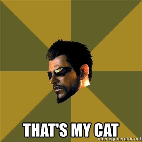 Adam Jensen -  That's my cat