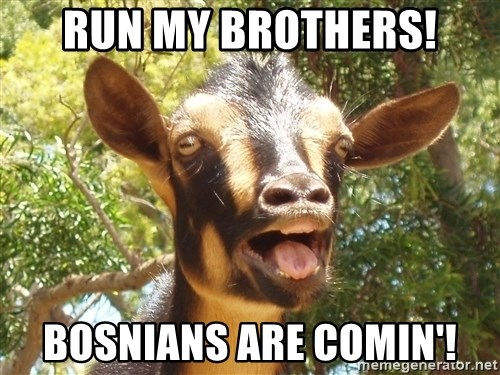 Illogical Goat - Run my brothers! Bosnians are comin'!