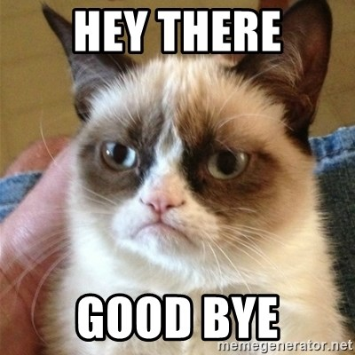 Grumpy Cat  - Hey there good bye