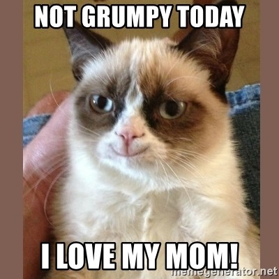 smiling Grumpy cat brown - Not grumpy today I love my mom!