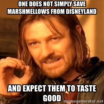 One Does Not Simply - One does not simply save marshmellows from disneyland and expect them to taste good