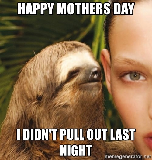 The Rape Sloth - happy mothers day i didn't pull out last night