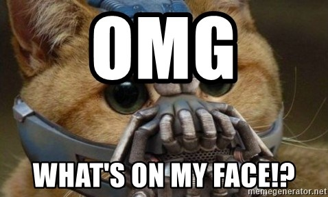 bane cat - OMG  WHAT'S ON MY FACE!?