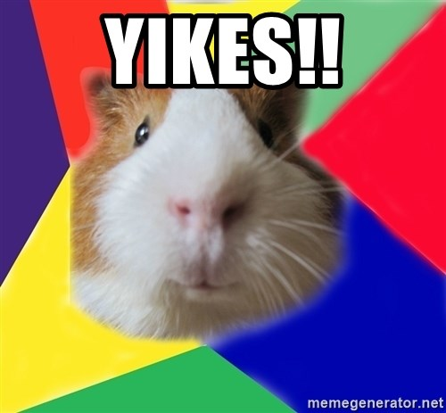 Typical guinea pig - yikes!!