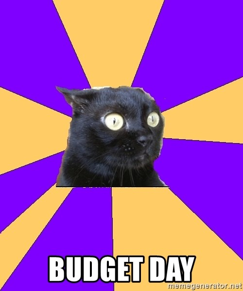 Anxiety Cat -  BUDGET DAY