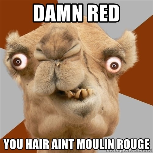 Crazy Camel lol - damn red you hair aint moulin rouge