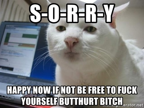 Serious Cat - s-o-r-r-y happy now if not be free to fuck yourself butthurt bitch