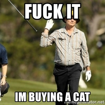 Fuck It Bill Murray - Fuck It Im Buying a cat