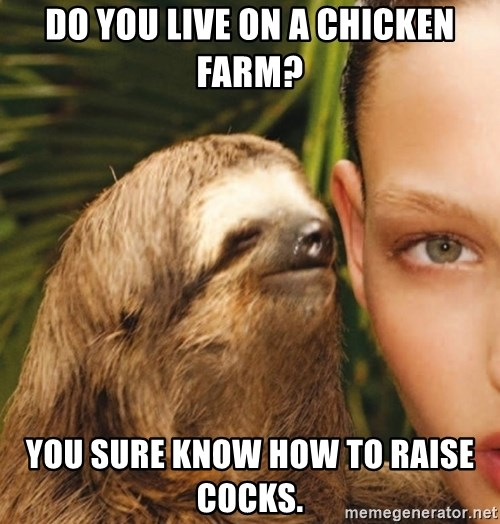The Rape Sloth - Do you live on a chicken farm? You sure know how to raise cocks.