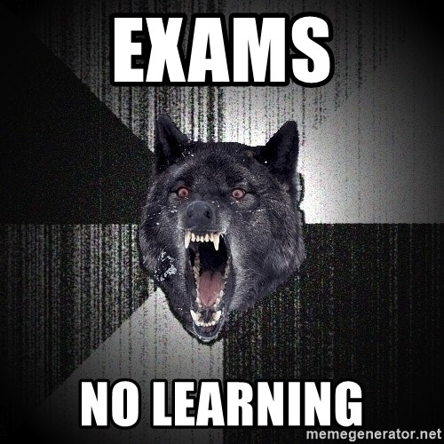 Insanity Wolf - EXAMS NO LEARNING