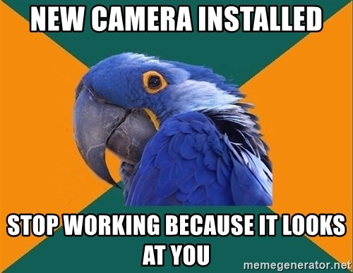 Paranoid Parrot - NEW CAMERA INSTALLED STOP WORKING BECAUSE IT LOOKS AT YOU
