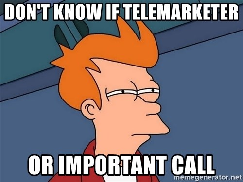 Futurama Fry - Don't know if telemarketer Or important call