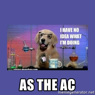 I don't know what i'm doing! dog -  AS THE AC