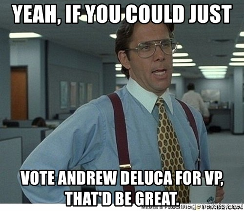 Yeah If You Could Just - yeah, if you could just vote andrew deluca for vp, that'd be great.