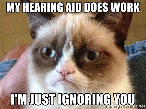 Angry Cat Meme - my hearing aid does work I'm just ignoring you