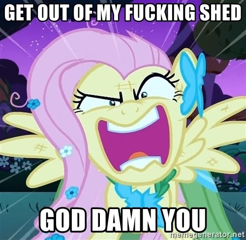 angry-fluttershy - Get out of my fucking shed god damn you