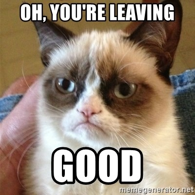 Grumpy Cat  - Oh, YOU'RE LEAVING GOOD