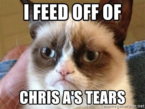 Angry Cat Meme - I feed off of Chris a's tears