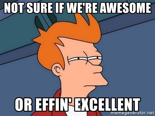 Futurama Fry - NOT SURE IF we're awesome or effin' excellent