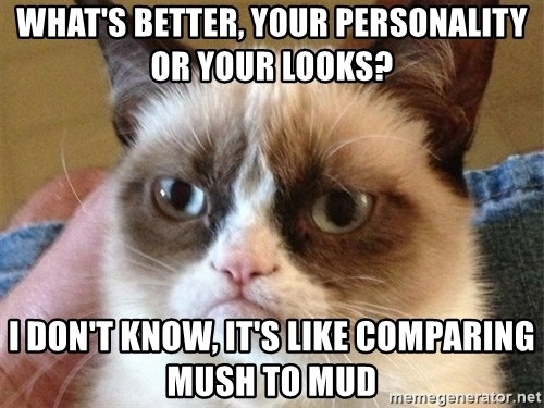 Angry Cat Meme - What's better, your personality or Your looks? I don't know, it's like comparing mush to mud