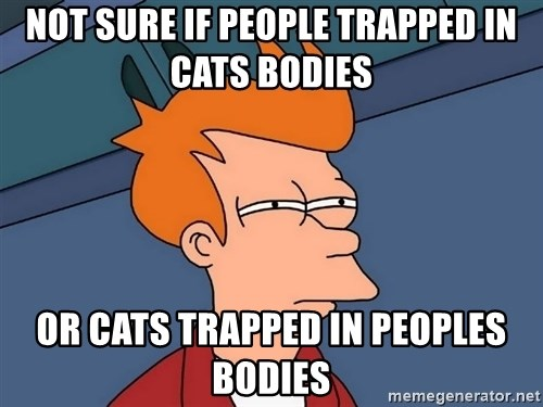 Futurama Fry - Not sure if people trapped in cats bodies or cats trapped in peoples bodies