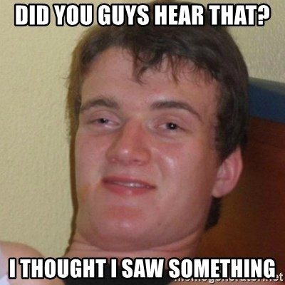 Really Stoned Guy - did you guys hear that? i thought i saw something