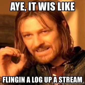 One Does Not Simply - aye, it wis like  flingin a log up a stream
