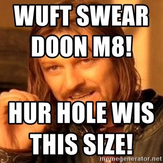 One Does Not Simply - wuft swear doon m8!                                  hur hole wis this size!