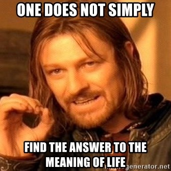 One Does Not Simply - ONE DOES NOT SIMPLY FIND THE ANSWER TO THE MEANING OF LIFE
