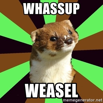 Witchcraft Weasel - WHASSUp WEASEL