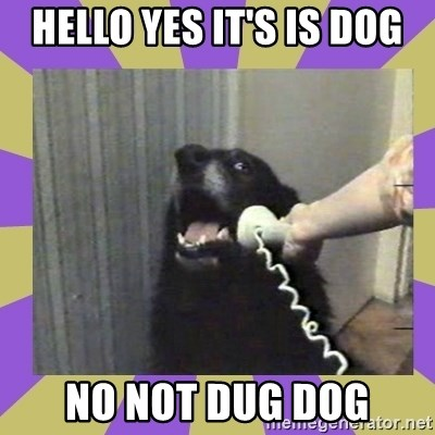 Yes, this is dog! - HELLO YES IT'S IS DOG NO NOT DUG DOG