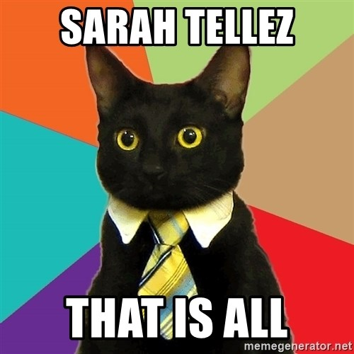 Business Cat - Sarah Tellez That is all