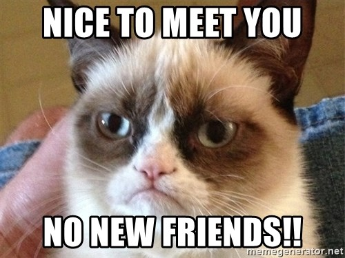 Angry Cat Meme - Nice to meet you no new friends!!