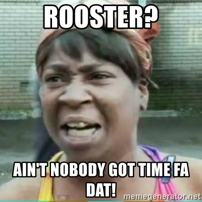 Sweet Brown Meme - ROOSTER? Ain't nobody got time fa dat!