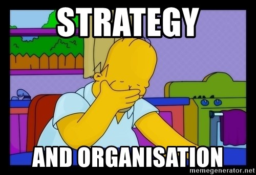 Homer Facepalm - Strategy and organisation