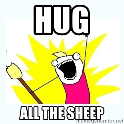 All the things - Hug  All the SHEEP