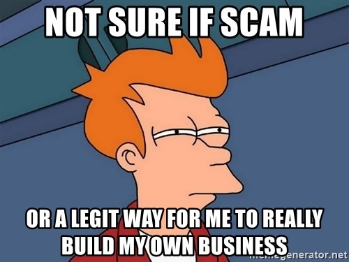 Futurama Fry - not sure if scam or a legit way for me to really build my own business