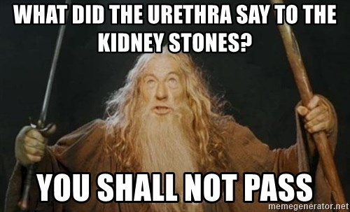 You shall not pass - what did the urethra say to the kidney stones? you shall not pass