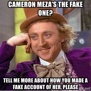 Willy Wonka - CAMERON MEZA'S THE FAKE ONE? TELL ME MORE ABOUT HOW YOU MADE A FAKE ACCOUNT OF HER, PLEASE