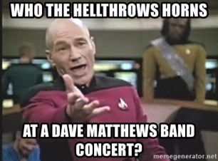 Picard Wtf - Who the hellTHROWS HORNS at a Dave Matthews Band Concert?