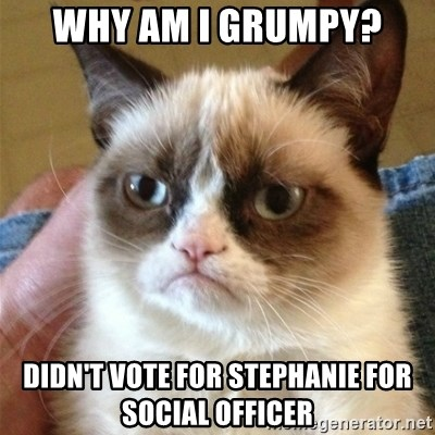 Grumpy Cat  - Why am i Grumpy? Didn't vote for stephanie for social officer