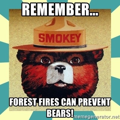 Smokey the Bear - Remember... Forest fires can prevent bears!