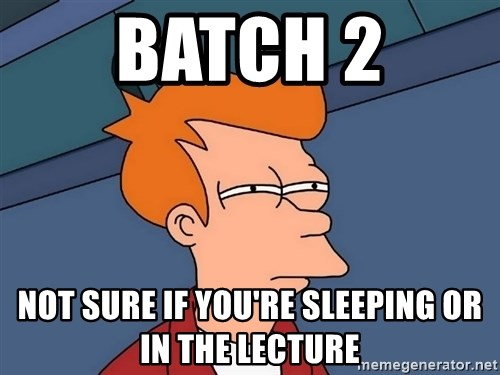 Futurama Fry - batch 2 not sure if you're sleeping or in the lecture
