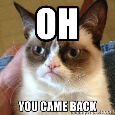 Grumpy Cat  - Oh you came back